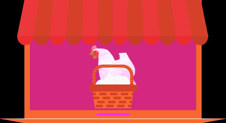 gallinas ponedoras tienda