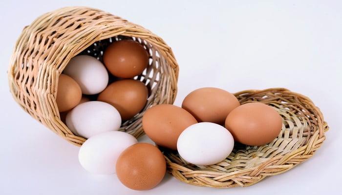 tipos de huevos 3
