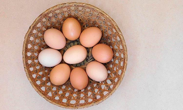 Huevos de gallina de distintos tonos de marron